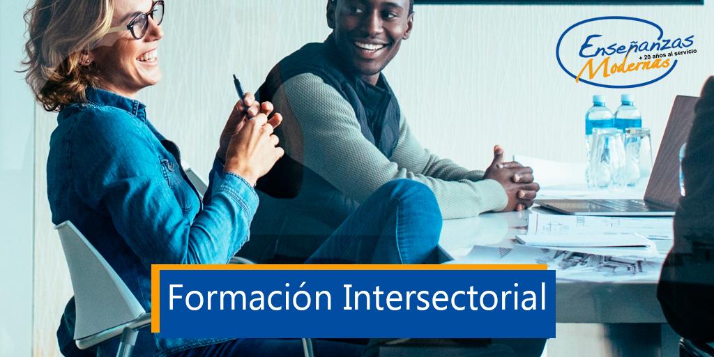 formacion intersectorial